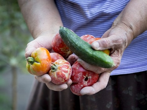 Organic food could be a part of your C-store.